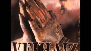 VEIHAIZ:power lift/naturally(japanese hardcore punk.2007)