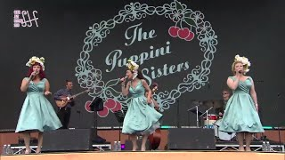 Heart Of Glass LIVE - Western Swing Blondie Cover - The Puppini Sisters