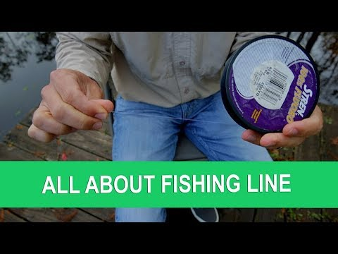 Strengths, Weaknesses Of 3 Main Fishing Line Types