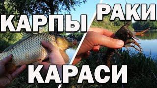 Рыбалка удалась карась рак карп