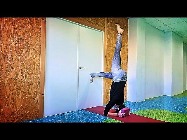 Aprende a subir a Sirsasana 🙌🌠 (con bloque y pared)