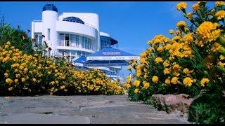 цены частного сектора(Пожалуйста подпишитесь на мой канал ЮТУБ. Затока-летний отпуск на Черном море. На золотых пляжах Затоки..., 2016-06-16T12:09:59.000Z)