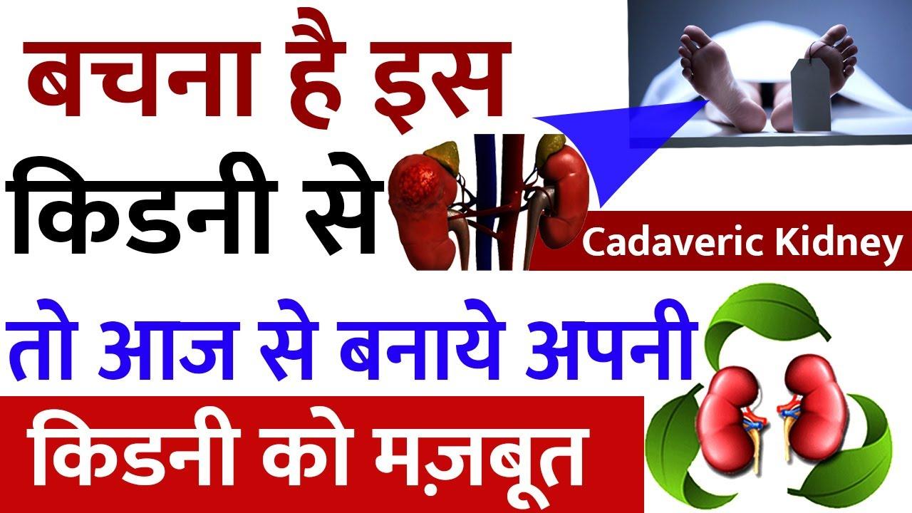 Cadaveric किडनी के बारेमे पूरी जानकारी हिंदी में | Cadaveric Kidney | Kidney Treatment In Ayurveda