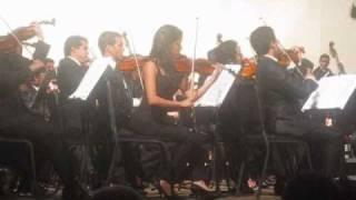 Beethoven Sinfonia nº 7 mov 2 en el Teatro Municipal de Valencia