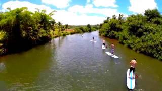 Hawaii Turtle Tours - Town in Haleiwa