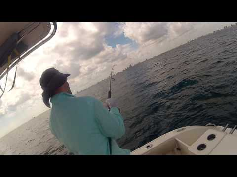 Vertical Jigging Mutton Snapper Off Shore Miami Daiwa Reel