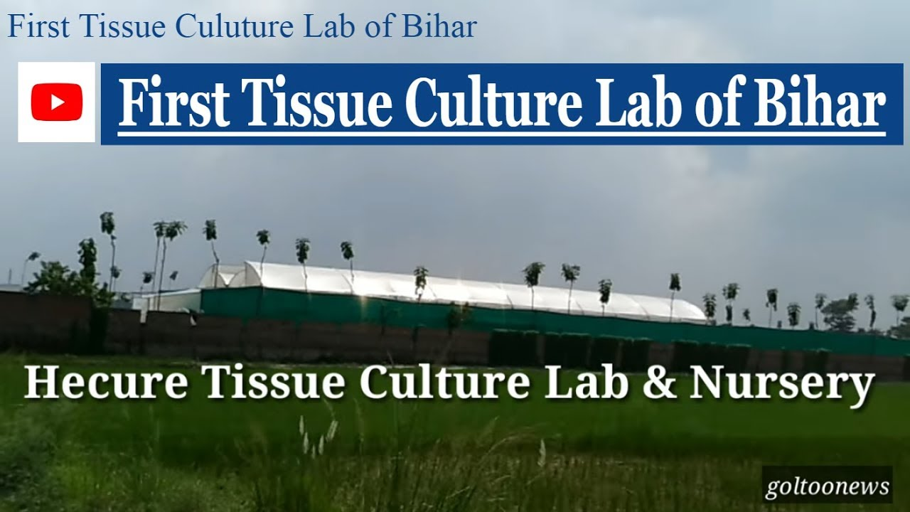First tissue culture lab of Bihar at Muzaffarpur India