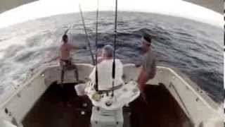 Funny Big Game Fishing