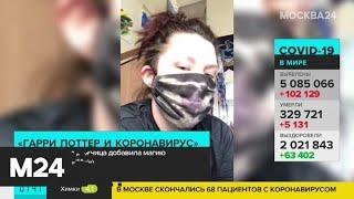 """Гарри Поттер и коронавирус"": художница добавила магию в мир эпохи пандемии - Москва 24"