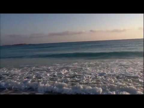 Burt Bacharach & Dusty Springfield -The look of love- video