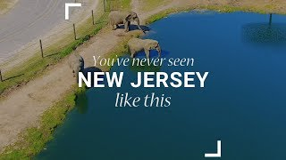 Safari: You've never seen New Jersey like this
