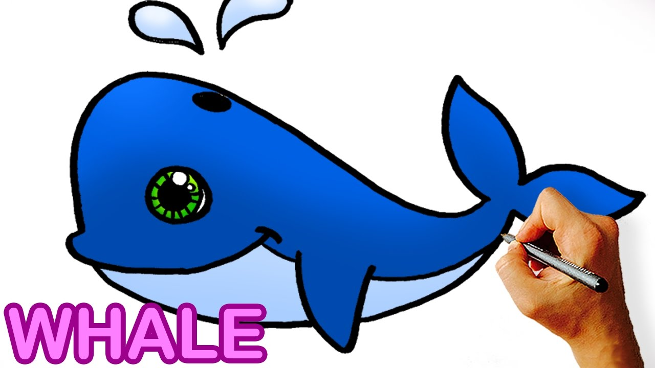 how to draw cute cartoon whale art for kids