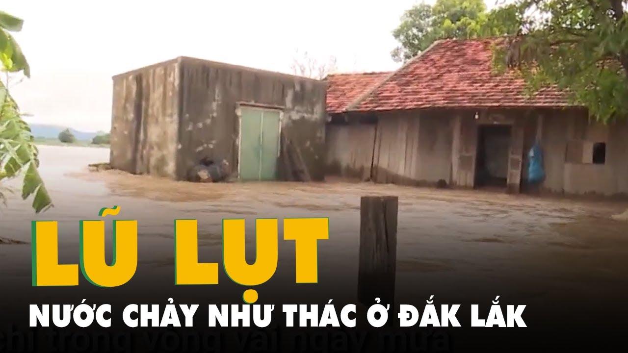 Download Nước chảy như thác, nhà ngập sâu, đường chia cắt ở Đắk Lắk