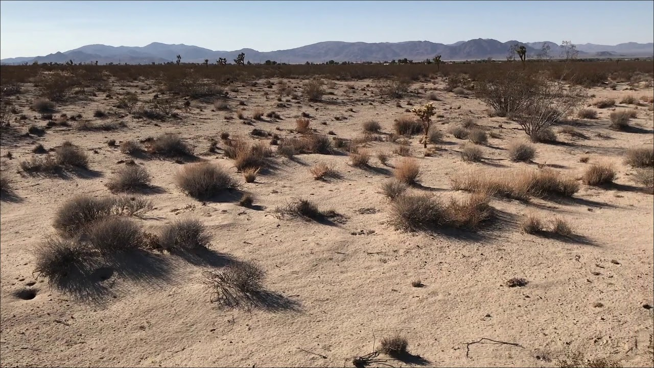 Ten Acres Vacant Land in Lucerne Valley