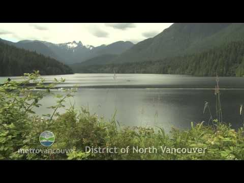 District North Vancouver Profile
