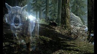Волк призрак.  Часть 1.