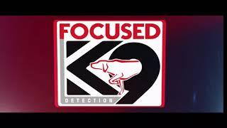 Focused K9 Odor Ball | Detection Ball For Dogs | K9 Nosework Ball