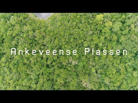 Ankeveense Plassen (Ankeveen,