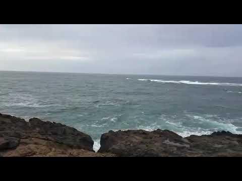 Beautiful pacific ocean | coastline road trip | oregon