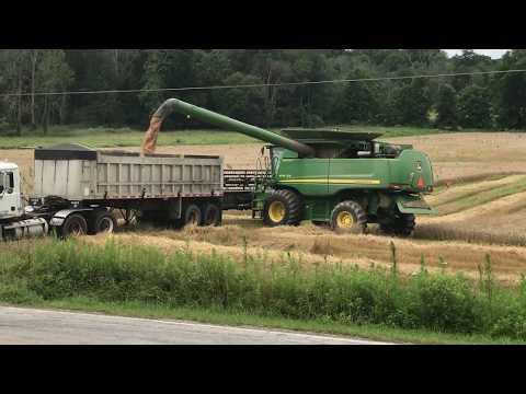 Massillon Ohio Wheat Harvest - July 2017