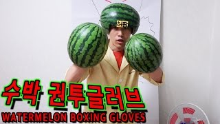수박으로 UFC권투글러브 만들어서 복싱하기 - 허팝 (Watermelon UFC Boxing Gloves)
