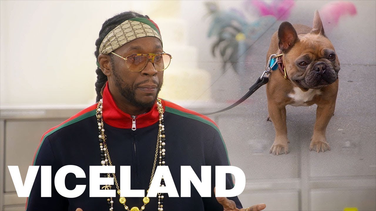 2 Chainz Orders A 15000 Birthday Cake For His Dog Youtube