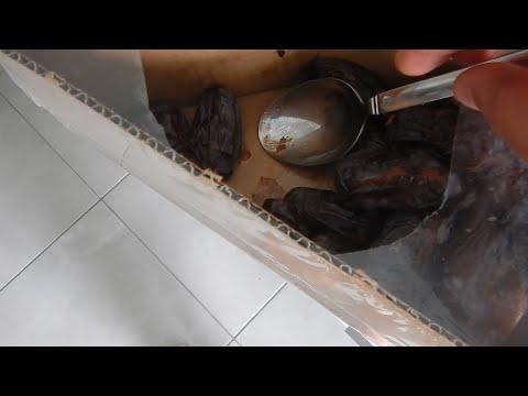 Fermented Medjool Dates (Bazar Vest)