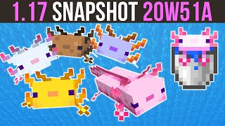 Minecraft 1.17 Snapshot 20w51a The Axolotl Has Arrived!