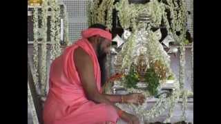 Sri Ganapathy Sachchidananda Swamiji Unveiled-Sri Swamiji Life Story