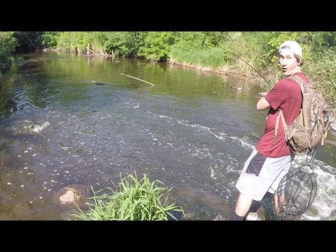 Fishing At Elm Creek - Maple Grove, MN