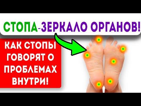 Как стопы предупреждают о состоянии внутренних органов и…