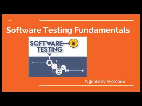Software Testing Fundamentals : Testing A Input Text Field