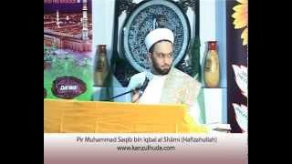 Haq Chaar Yaar - Mantiq, Balaghat & Nahw - Pir Saqib Shaami (Urdu)