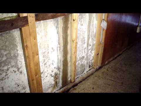 Efflorescence in the Basement: Causes and Solutions | | Ask the Expert | Lowcountry Basement Systems