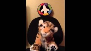 Hippy Tiger Thumbnail