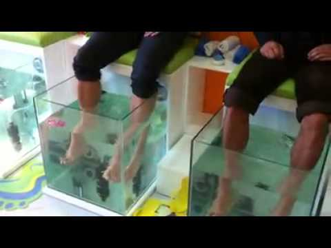 Dr.Fish Spa Happy Hands & Feet Izmir/ Turkey