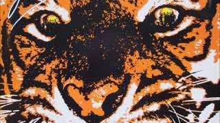 Baixar Survivor - Eye Of The Tiger