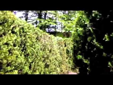 Villas of the Labirinths in Italy - Labirinti nelle ville del Veneto