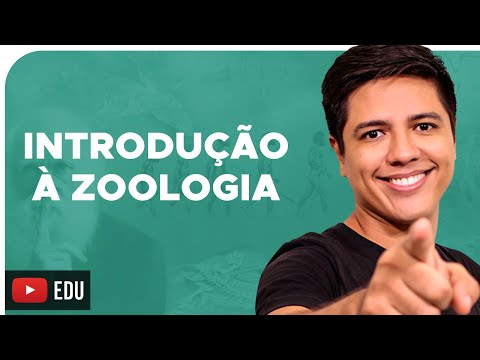 ZOOLOGIA - Conceitos Básicos - Reino Animalia - Prof. Kennedy Ramos