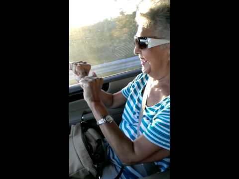 80 year old grandma loves rapper Pitbull