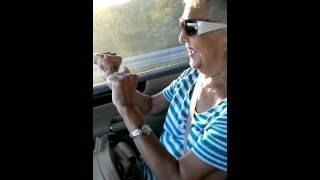 80 year old grandma loves rapper Pitbull