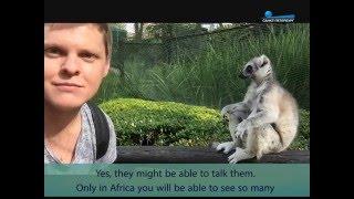 Путешествие по Южной Африке часть 1([Republic of South Africa Part1 ] Ребята, рассказываю про путешествие в Южную Африку. Задавайте вопросы. Ставьте лайки..., 2016-05-03T12:21:12.000Z)