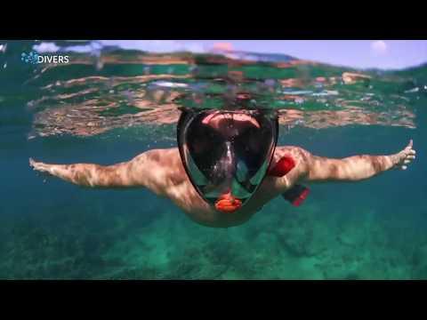 Полнолицевая маска для снорклинга: дешевая или дорогая? Tribord против OceanReef!