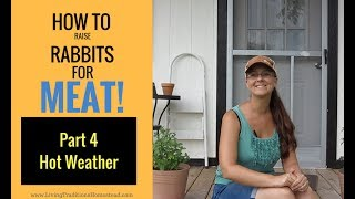 How to Raise Rabbits for Meat: Part 4 Keeping Rabbits Cool in Hot Weather