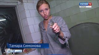 В Крыму появились огромные креветки