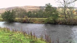 An Introduction to Basic Salmon Fly Fishing