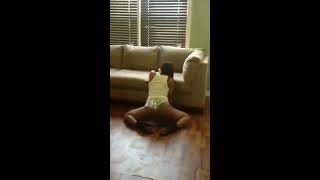 Repeat youtube video Ms grip dat dancing to fucking problem