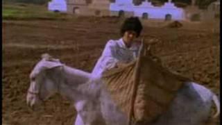 El Moulid: Egyptian Religious Festival - PREVIEW
