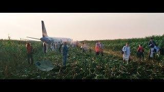 Самолет A321 сел в поле. Видео с места происшествия.