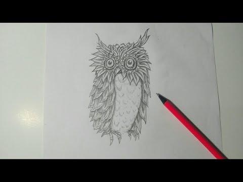 Gambar Mudah Simple Sketsa Pensil Burung Hantu Owl Youtube